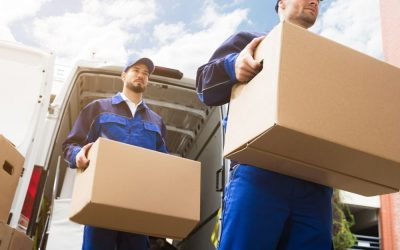 Same Day Delivery Haulage & Freight Services